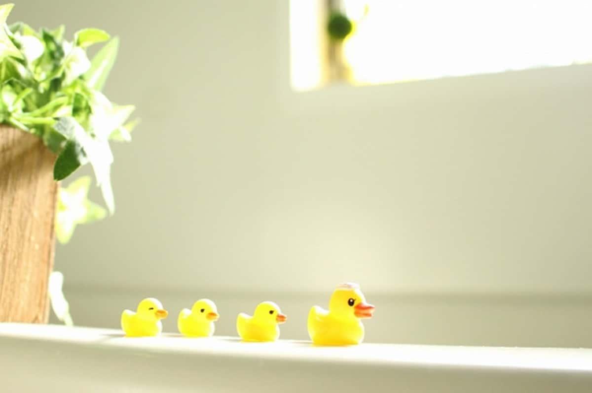 お風呂のあひるさん