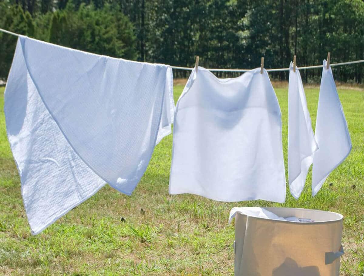 お庭で洗濯物を干す